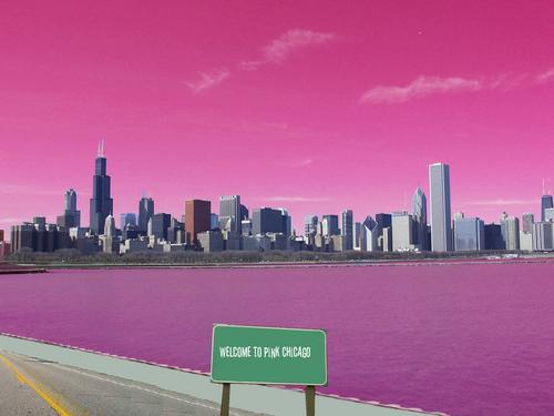 rosa Chicago