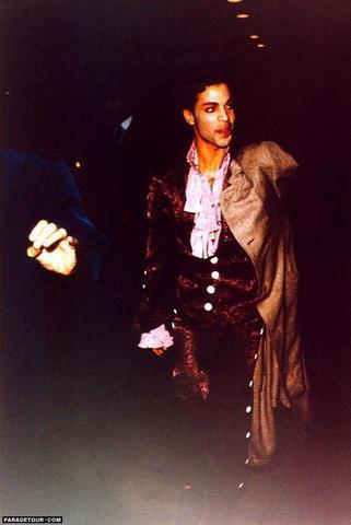 Prince wallpaper titled Prince