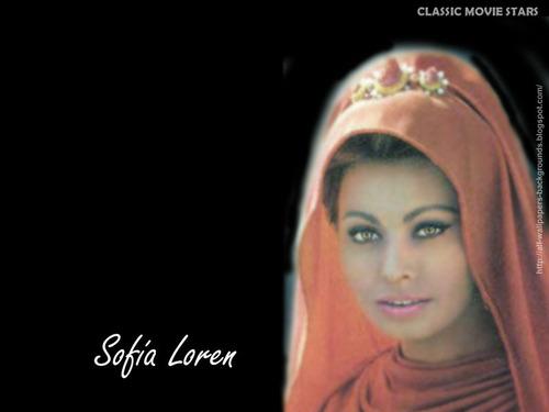 सोफिया लॉरेन वॉलपेपर possibly with a portrait called Sophia Loren