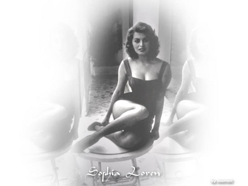 Sophia Loren wallpaper possibly with a swimsuit, a leotard, and a maillot titled Sophia Loren