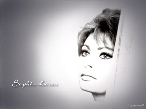 सोफिया लॉरेन वॉलपेपर possibly containing a portrait titled Sophia Loren
