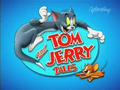 T&J_tales - tom-and-jerry photo