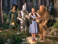 We're off to see the Wizard - the-wizard-of-oz screencap