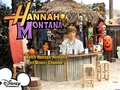 hannah montana season 3 wallpaper 5