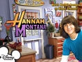 hannah montana season 3 wallpaper 7