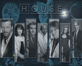 ::: Cast ::: - house-md wallpaper