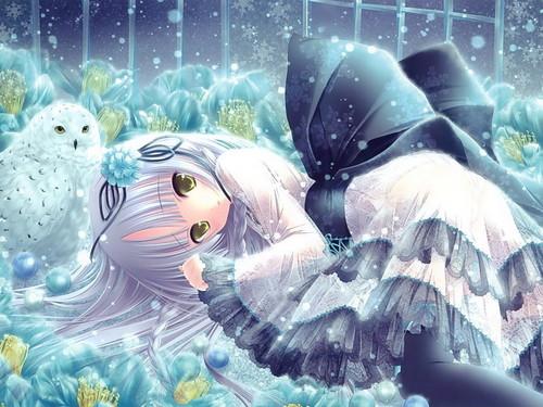 Anime~