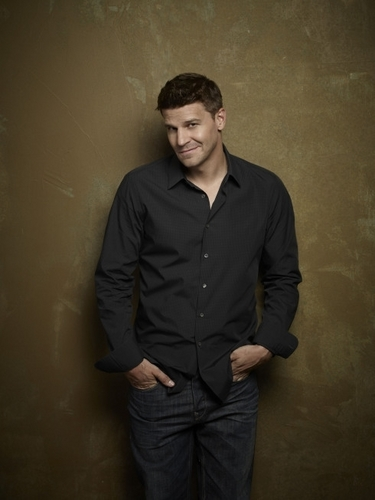 Seeley Booth Hintergrund with a well dressed person and a business suit called Booth - Photoshoot Image
