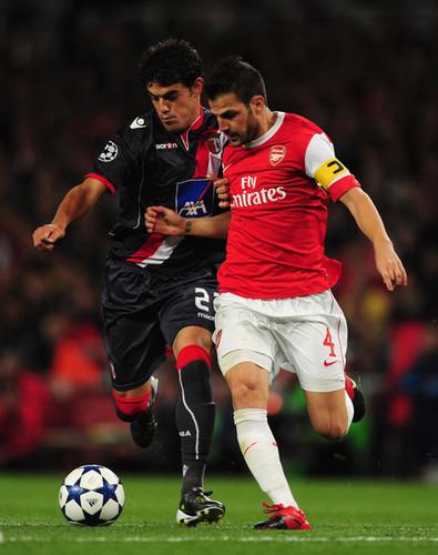 Cesc in Arsenal