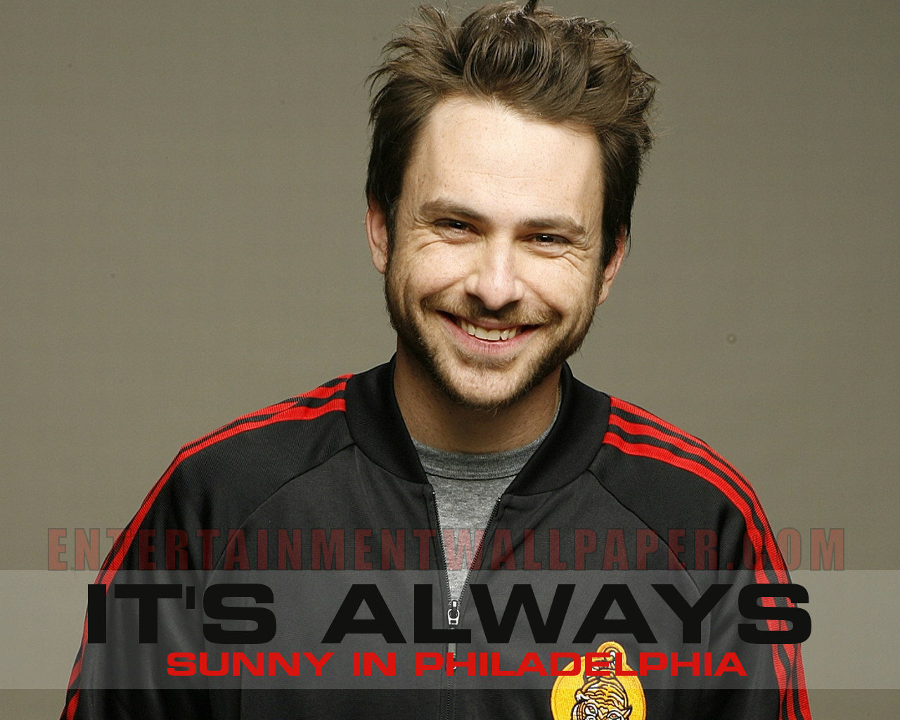 Charlie Day - Images Hot