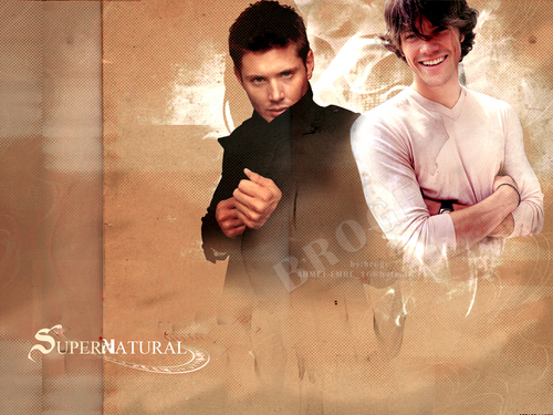 Jared Padalecki wallpaper called Jared Padalecki wallpaper