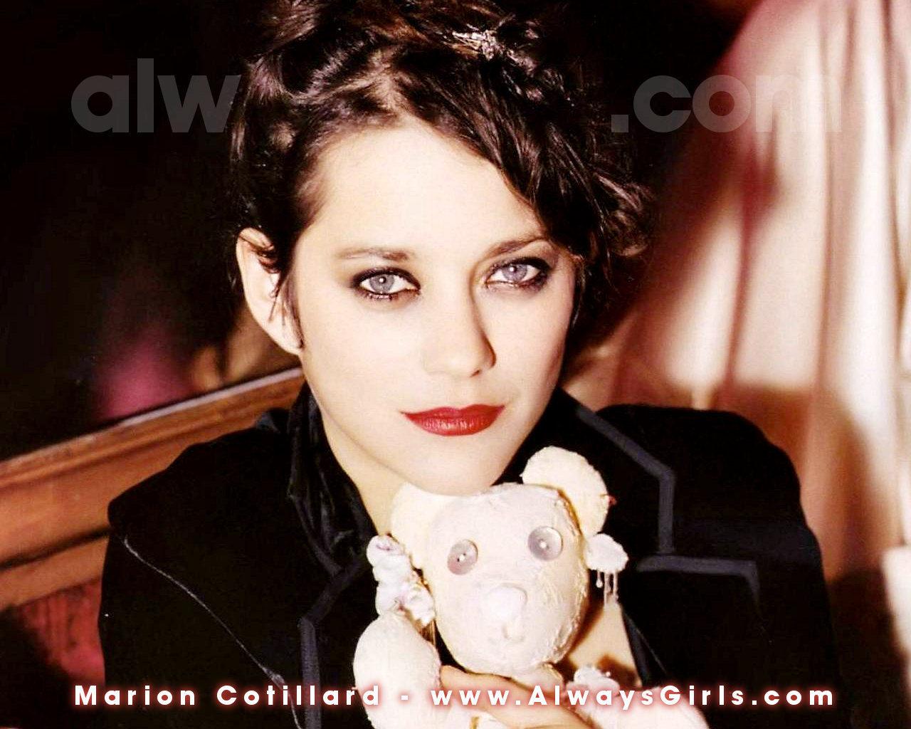 Marion Cotillard image...