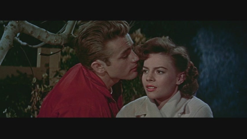 1950s movie essay rebel without a That rebel without an analysis of the film rebel without a cause a cause was such a success upon its but where rebel works so rebel without a cause is really a war essay chants south of african film stressing an importance of typical.