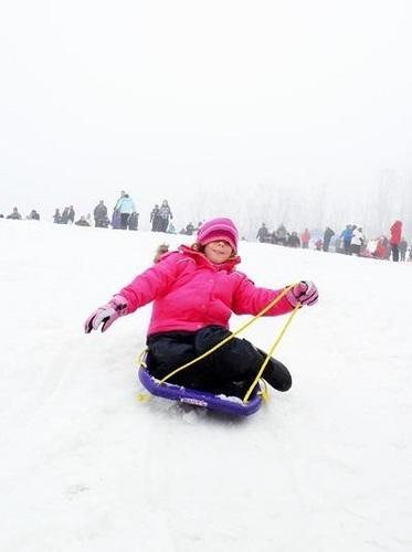 Renesmee sledging