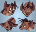 Shenzi expressions - hyenas-from-lion-king fan art