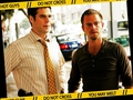 danny & flack - csi-ny wallpaper