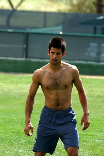 Novak Djokovic images djokovic shirtless bulge HD wallpaper and background photos