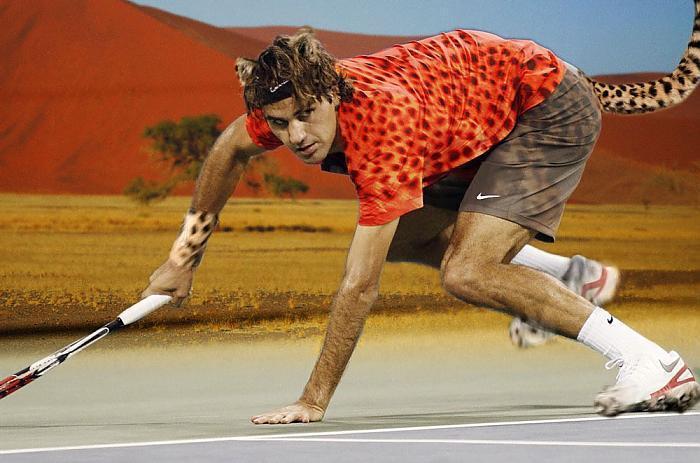 federer gepard