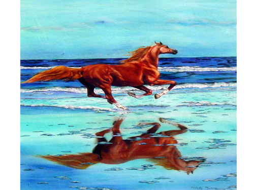 A horse in the sea