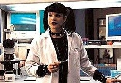 Abby Sciuto fond d'écran possibly with a portrait called Abby Sciuto