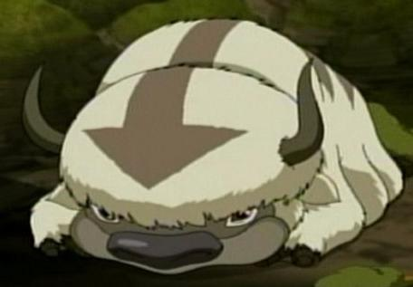 Avatar The Last Airbender Images Appa Wallpaper And Background Photos