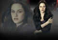 Bella Swan  - just_bella photo