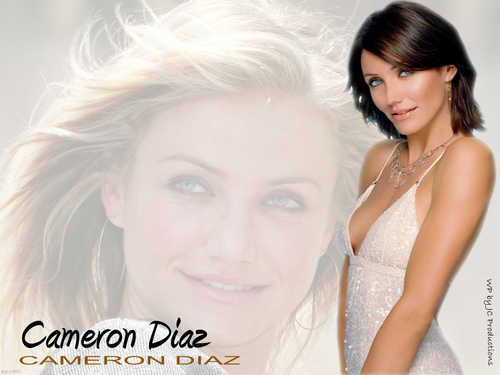 cameron diaz fondo de pantalla containing a portrait called Cameron Diaz