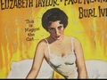 Cat on a Hot Tin Roof: Playing Cat and Mouse (DVD Featurette) - cat-on-a-hot-tin-roof screencap