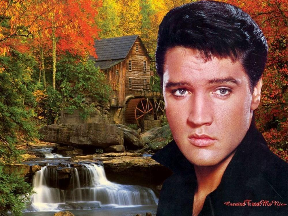 Elvis Presley Images Elvis Wallpapers Hd Wallpaper And HD Wallpapers Download Free Images Wallpaper [1000image.com]