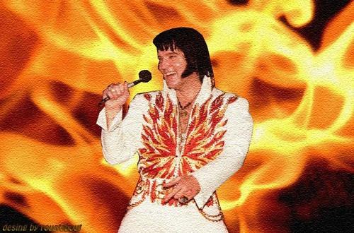 Elvis Who Else!