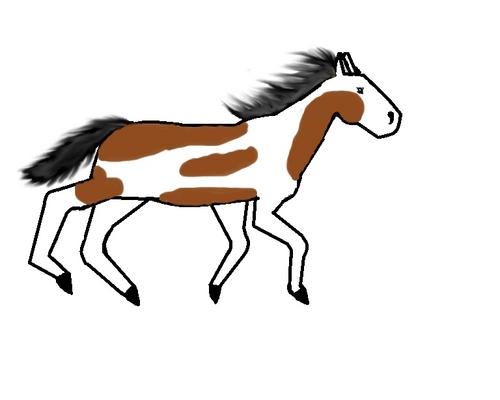 My mare that I drew