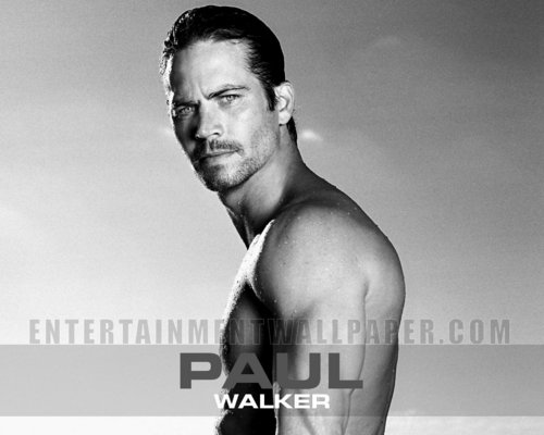 Paul Walker wallpaper possibly with a hunk, a six pack, and a portrait titled Paul Walker