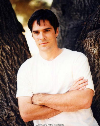 Thomas Gibson wallpaper with a sitka spruce called Thomas Gibson (HQ)