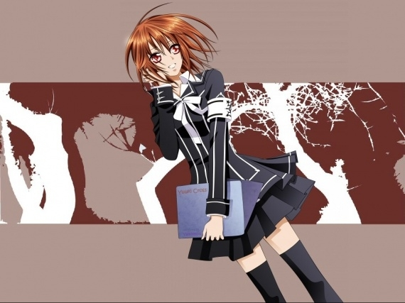 http://images4.fanpop.com/image/photos/15700000/Yuki-Cross-vampire-knight-15715053-570-427.jpg