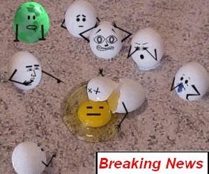 brakin news
