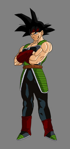 Bardock full body pic.