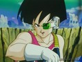 Bardock's wife, Fasha - bardock photo