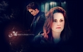 edward-cullen - Bella and Edward wallpaper