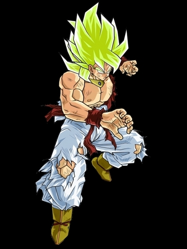 Broku-the Potara Fusion of Broly and Kakkarot