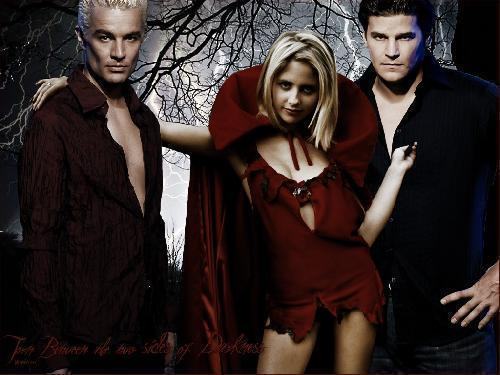 Buffy & 앤젤 show