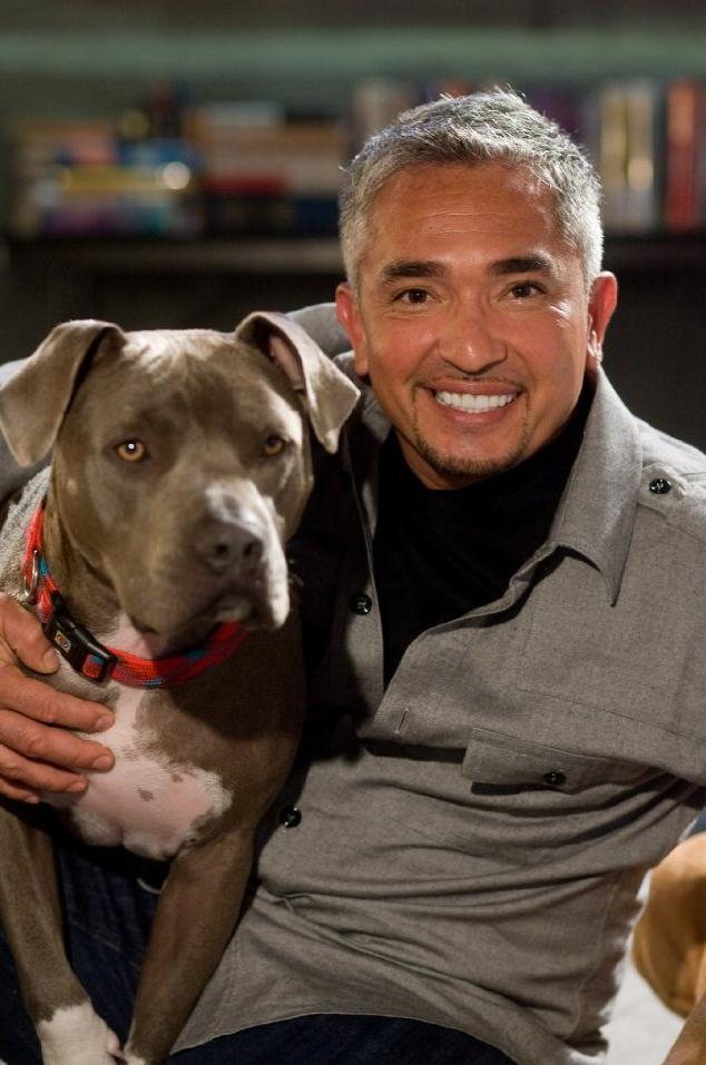 Cesar Millan Net Worth