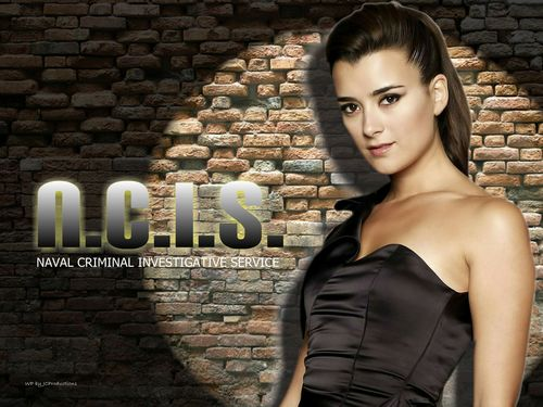 Cote de Pablo achtergrond possibly with a cocktail dress, tights, and a straat titled Cote de Pablo