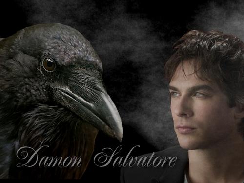 Damon Salvatore karatasi la kupamba ukuta I