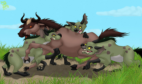 Hyenas from Lion King wallpaper titled Hyenas hunting