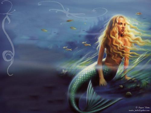 Mermaid Wallpaper - mermaids Wallpaper