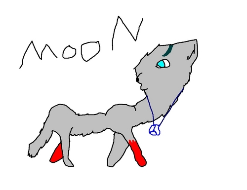 Moon, the maker and alpha of BloodPack