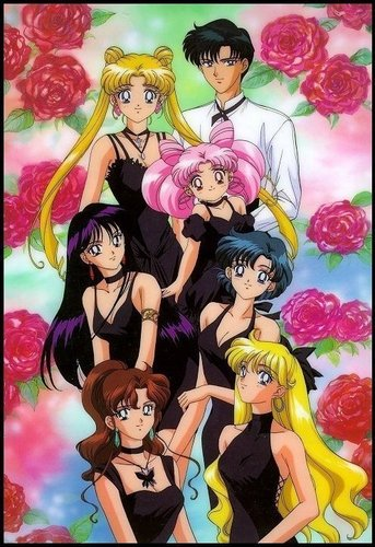 Sailor Moon karatasi la kupamba ukuta with anime entitled Sailor scouts
