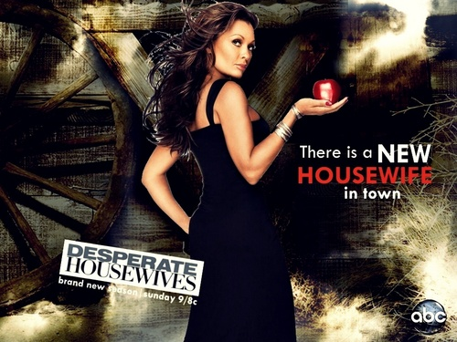 http://images4.fanpop.com/image/photos/15800000/Season-7-promo-wallpaper-desperate-housewives-15829716-500-375.jpg