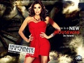 Season 7 promo wallpaper - desperate-housewives wallpaper
