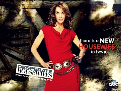 http://images4.fanpop.com/image/photos/15800000/Season-7-promo-wallpaper-desperate-housewives-15829746-500-375.jpg